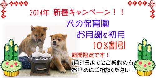 犬の保育園入園キャンペーン