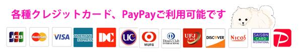 クレジットカード支払い、PayPay支払い
