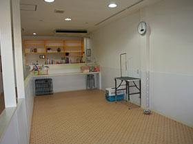 犬の保育園(幼稚園)ドッグラン・プレイスペース